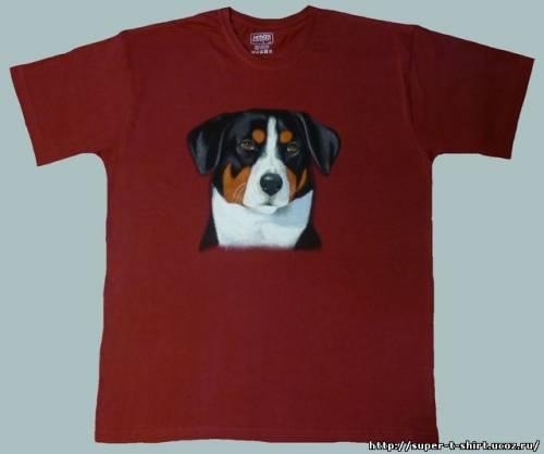 [img]http://super-t-shirt.ucoz.ru/_ph/5/2/980204688.jpg[/img]