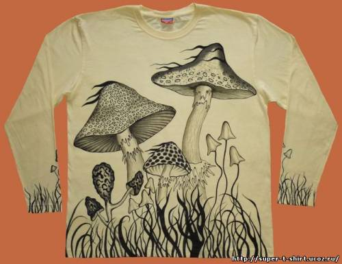[img]http://super-t-shirt.ucoz.ru/_ph/7/2/274516290.jpg[/img]